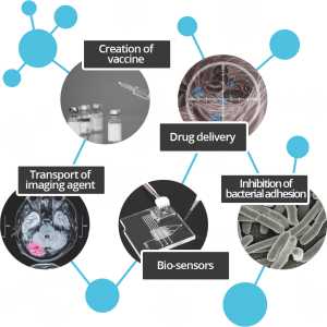 Nanomedicine nanoparticules features